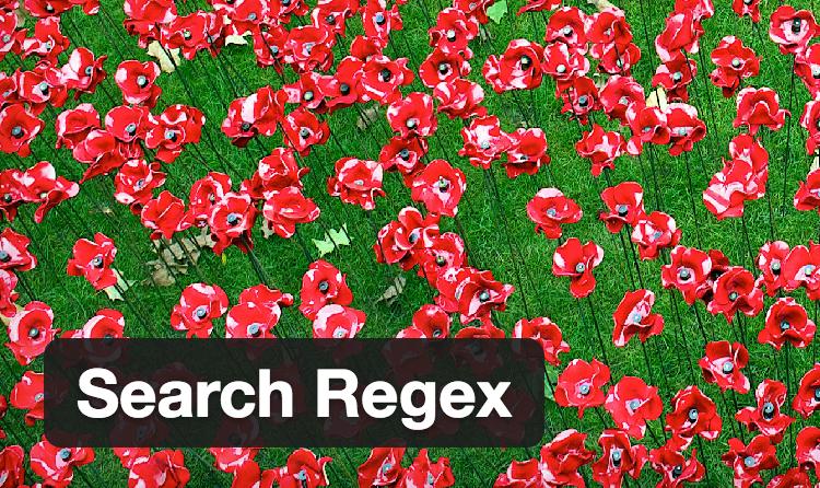 SearchRegex_メインmag
