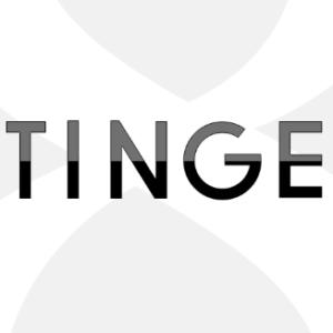 stinger8カスタマイズ