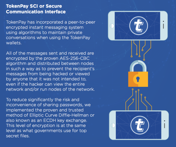 TokenPay-Secure Communication Interface