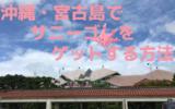 「ポケモンGO」を沖縄・宮古島でプレイ!地域限定のサニーゴの出現場所は?